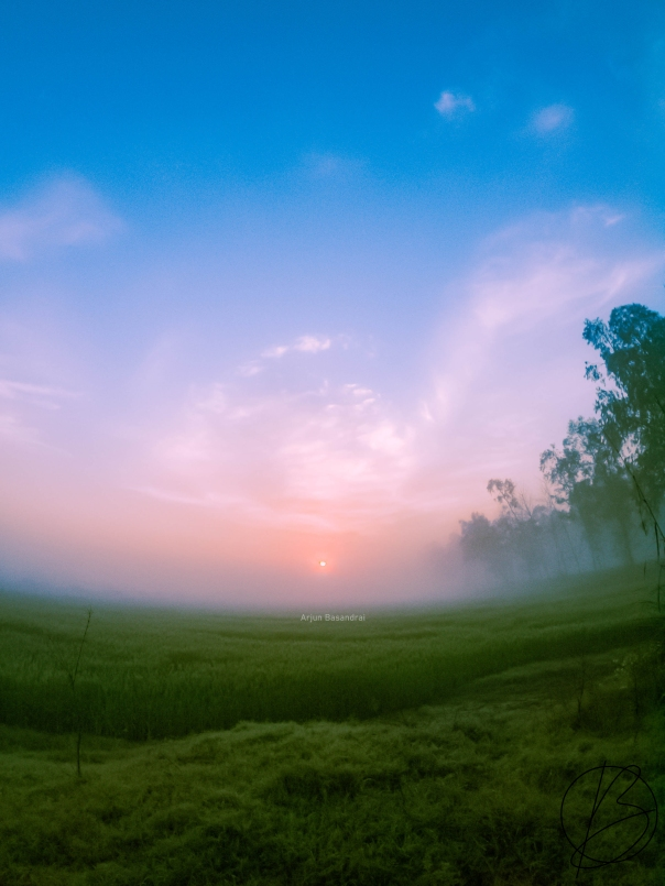 sunrise over fields